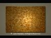 Golden Poppies 40x30